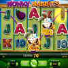 Wonky Wabbits von Net Entertainment